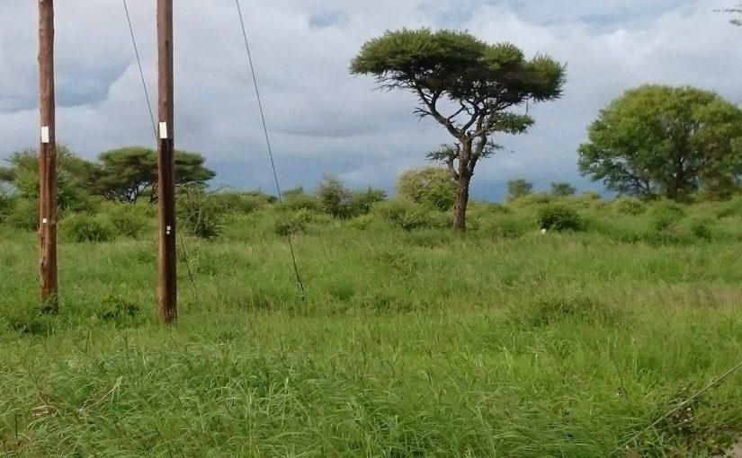 Kort oppsummering av Botswana så langt
